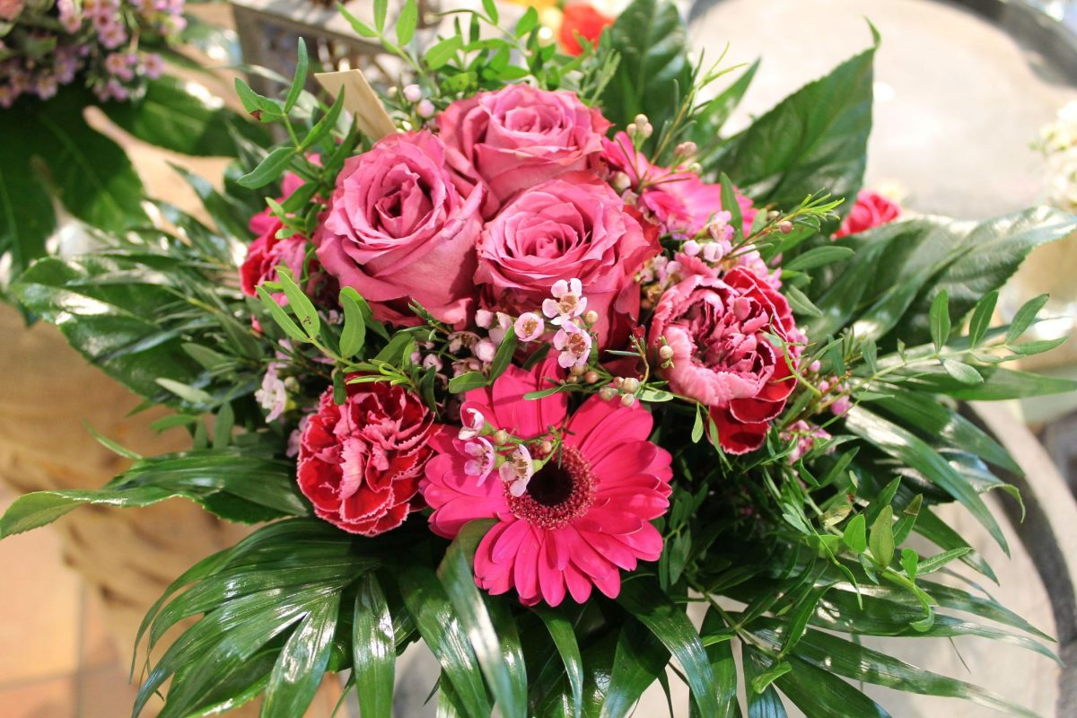 frische rosen haltbar machen